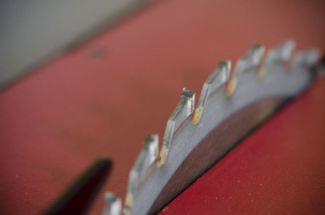 Close up photo of table saw teeth on a sawstop