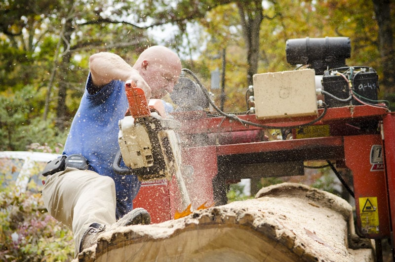 Todd Horne using a chainsaw to cut a white oak log to fit on a bandsaw mill